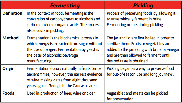 pickles and fermentation essay